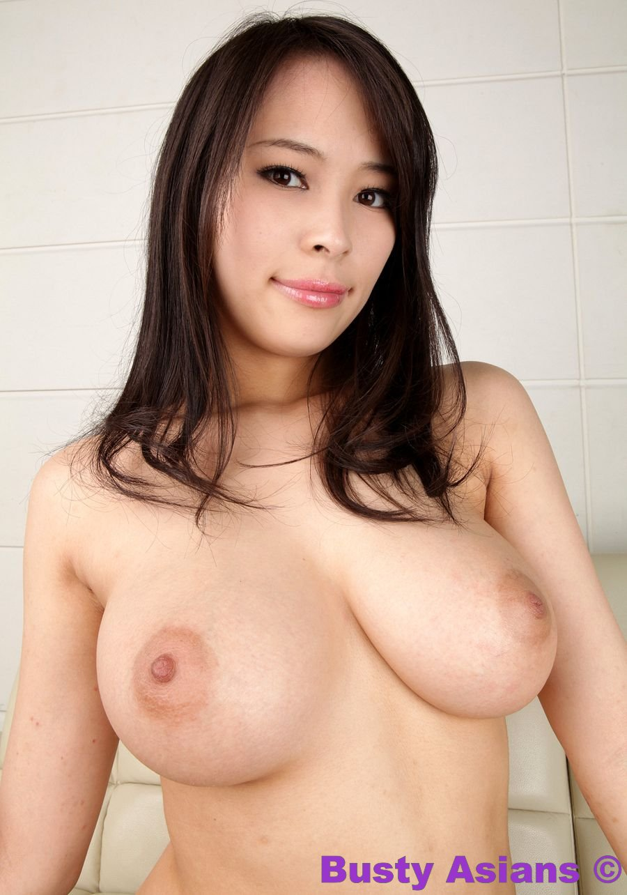 Busty asian lingerie apologise, but