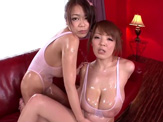 japanese tits